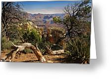 Yaki Point 4 The Grand Canyon Greeting Card by Bob and Nadine Johnston