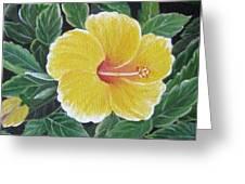 Yello Hibiscus Greeting Card by Usha Rai