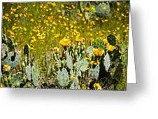Yellow Blooms Greeting Card by Mark Weaver