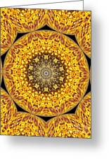 Yellow Burst  Greeting Card by Annette Allman