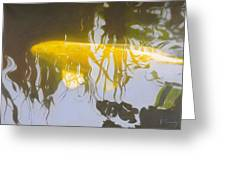 Yellow Carp In The Morning Greeting Card by Robert Conway