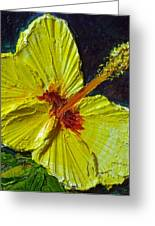 Yellow Hibiscus Greeting Card by Paris Wyatt Llanso
