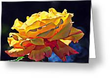 Yellow Rose Series - Crispy Greeting Card by Lilia D