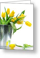 Yellow Spring Tulips Greeting Card by Sandra Cunningham