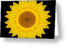 Yellow Sunflower Ix Flower Mandala Greeting Card by David J Bookbinder