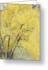 Yellow Trees Greeting Card by Ann Powell