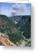 Yellowstone Afire Greeting Card by Sandra Bronstein