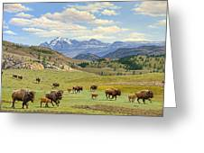 Yellowstone Spring Greeting Card by Paul Krapf