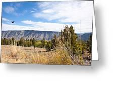 Yellowstone View Greeting Card by Cindy Singleton