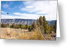Yellowstone View Greeting Card by Cindy Singleton