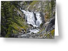 Yellowstone's Mystic Falls With Spring Flowers Greeting Card by Bruce Gourley