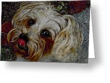 Yorkshire Terrier Artwork Greeting Card by Lesa Fine