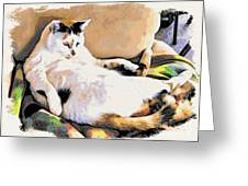 You Move The Stuff From The Corrner. I Need My Nap. Greeting Card by Phyllis Kaltenbach