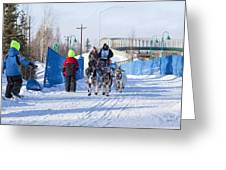 Young Fans Of Mushers Greeting Card by Tim Grams