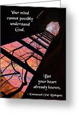 Your Mind Cannot Understand Greeting Card by Mike Flynn