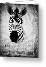 Zebra Profile In Bw Greeting Card by Ronel Broderick