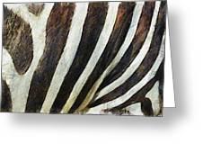 Zebra Texture Greeting Card by Ayse Deniz