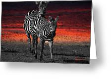 Zebra Train - Featured In Nature Photography - Wildlife And A Place For All Groups Greeting Card by EricaMaxine  Price
