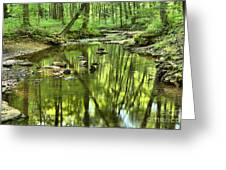 Zen In The Forest Greeting Card by Adam Jewell