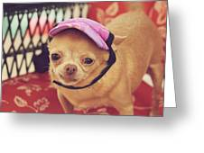 Zoe's Visor Greeting Card by Laurie Search