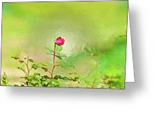 A Rose Greeting Card by Gib LaStrapes