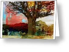 Baobab Greeting Card by Fania Simon