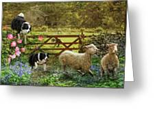 Collecting The Strays Greeting Card by Trudi Simmonds