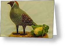 Gambel's Quail  Greeting Card by Russell Ellingsworth