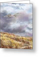 Seagull Flying Over Dunes Greeting Card by Jack Skinner