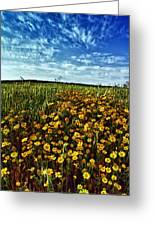 Spring Greeting Card by Stelios Kleanthous