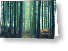 The Green Ray Greeting Card by Paul Grand