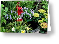 0021 Botanical Gardens Buffalo Ny Series Gardens Greeting Card by Michael Frank Jr