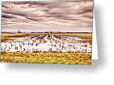 0704-8703 Winter Clouds At Holla Bend Wildlife Refuge Greeting Card by Randy Forrester