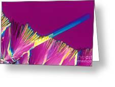Adenosine Triphosphate Greeting Card by Michael W. Davidson