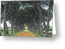Alley . Provence Greeting Card by Bernard Jaubert