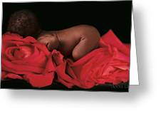 Amaya In Rose Greeting Card by Anne Geddes