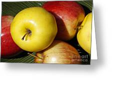 An Apple A Day Greeting Card by Denise Pohl