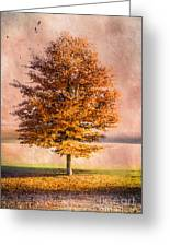 Autumn Light Greeting Card by Hannes Cmarits