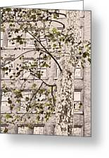 Bryant Park Greeting Card by JAMART Photography