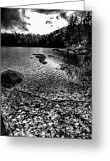 Cary Lake After The Storm Greeting Card by David Patterson
