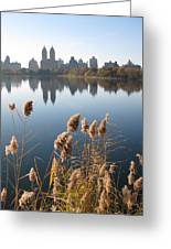 Central Park Greeting Card by Yannick Guerin