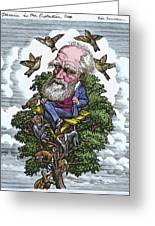 Charles Darwin In His Evolutionary Tree Greeting Card by Bill Sanderson