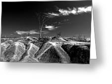 Cheltenham Badlands Greeting Card by Cale Best