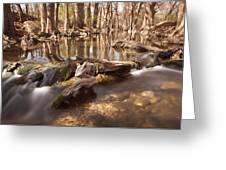 Cibolo Creek Greeting Card by Paul Huchton