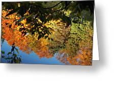 Colorful Reflections Greeting Card by LeeAnn McLaneGoetz McLaneGoetzStudioLLCcom