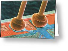Coloured Sem Of Integrated Circuit Micro-wires. Greeting Card by Power And Syred