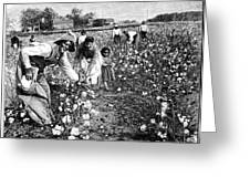 Cotton Industry, Early 20th Century Greeting Card by