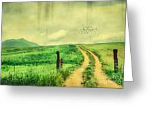 Country Roads Greeting Card by Darren Fisher