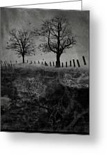Dark Roost Greeting Card by Ron Jones
