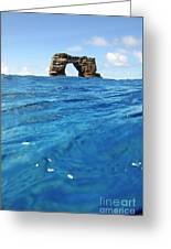 Darwin's Arch By Sea Level Greeting Card by Sami Sarkis